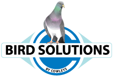 Bird Solutions by Cowleys Serving New Jersey, Pennsylvania, Delaware, New York, Connecticut, Rhode Island, Maryland, Washington DC